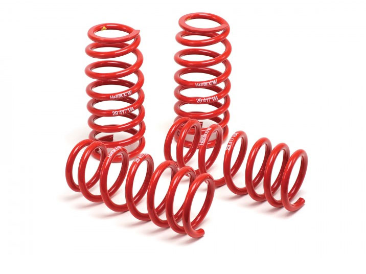 H&R 85-92 VW Golf II Jetta II 8V Race Spring 22/40