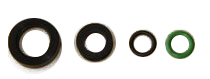 Fuel Injector Clinic Seal kit with Viton lower seal
