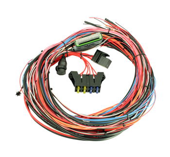 "AEM EMS 4 96"" Flying Lead Harness with Fuse and Relay Panel"